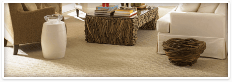 Carpet & Area Rugs